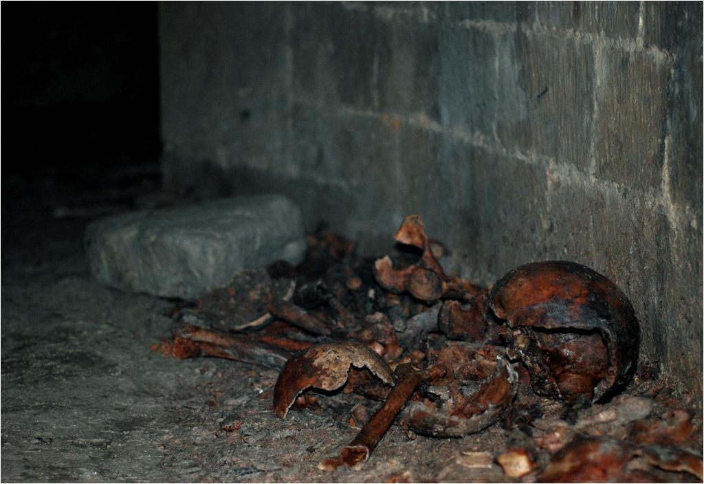 Walające się po korytarzach kości i czaszki. W takim sąsiedztwie odbywają się imprezy katafilów