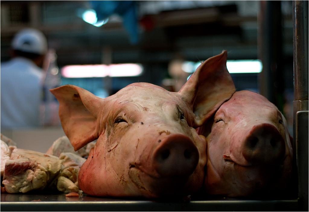 """Świńskie głowy """"reklamują"""" stoisko mięsne na targu w Limie"""