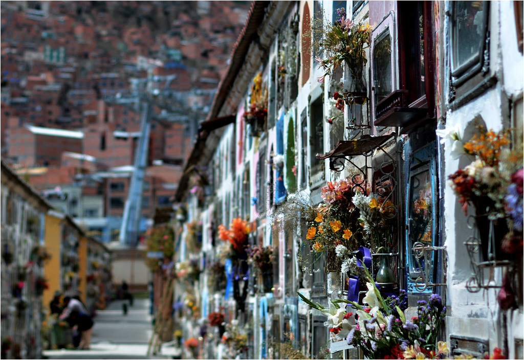 Cmentarz w La Paz, niczym miasto, dzieli się na lepsze i gorsze dzielnice. Bogatsze alejki pełne są kwiatów i ozdób