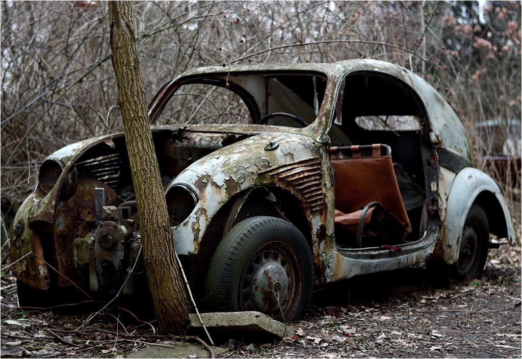 Kolekcja podzielona jest pomiędzy dwie działki. Na fotografii samochód z mniej znanej posesji...