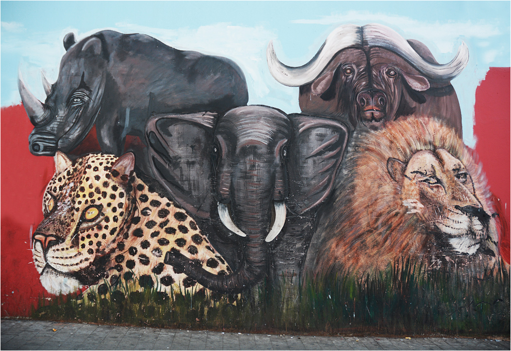 """""""Wielka piątka"""" zwierząt afrykańskich namalowana na murze w Johannesburgu. Lampart ma zeza"""