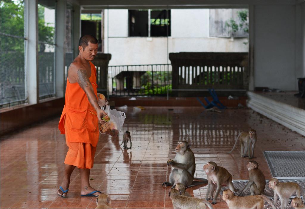 Mnich dokarmia małpy przed wejściem do jaskini nietoperzy