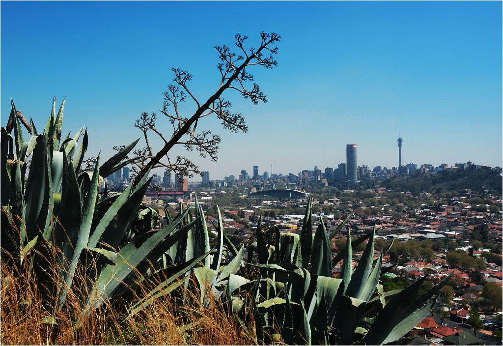 Ponte City wyróżnia się na tle Johannesburga
