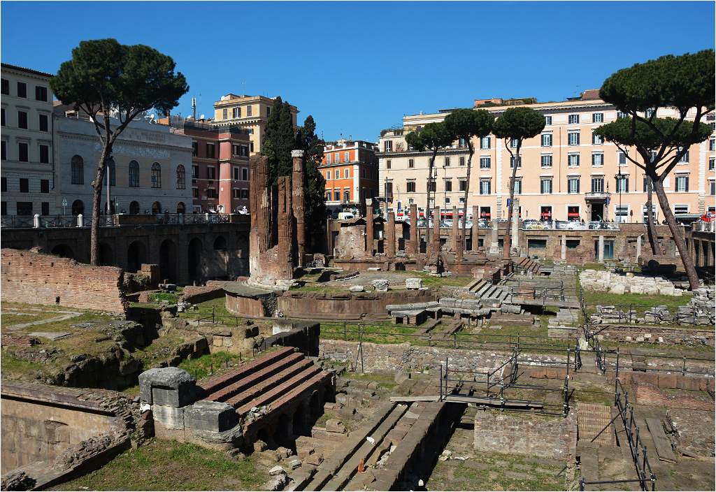 Torre Argentina, Rzym. Wprawne oko wychwyci kilka kotów wygrzewających się wśród ruin