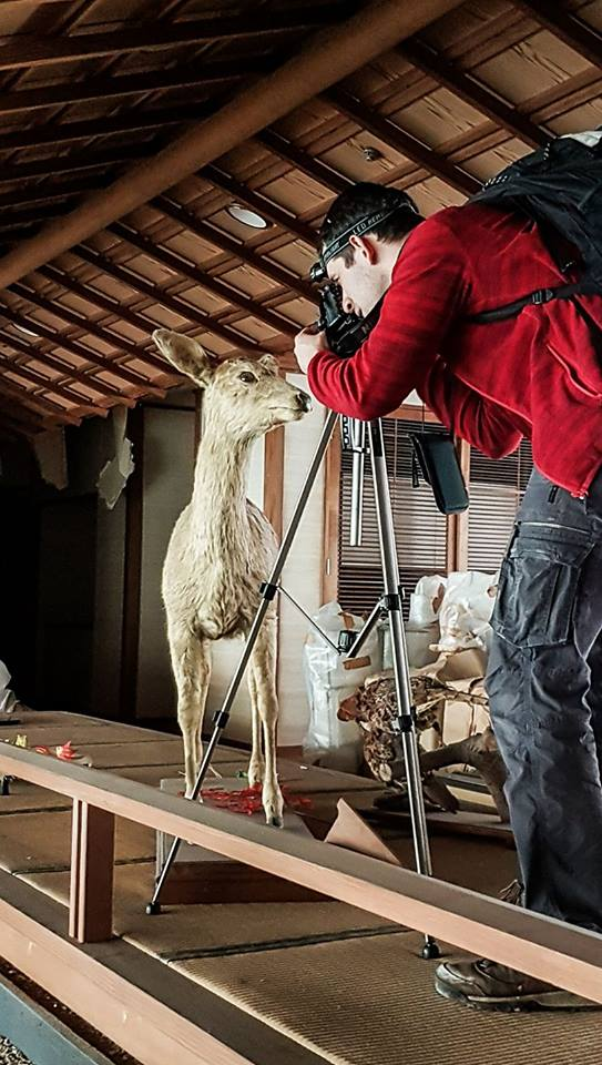 Zdjęcie z jeleniem - making of