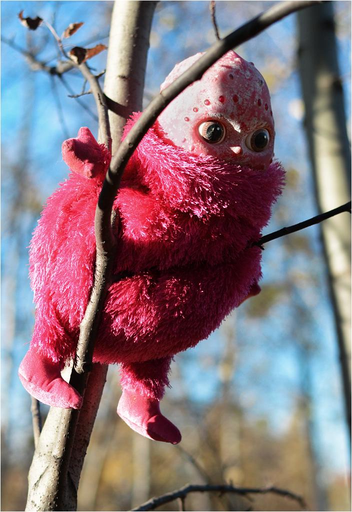 Wilda bywa całkiem creepy. Taką maskotkę znalazłem podczas spaceru. Wisiała na drzewie i patrzyła wzrokiem pozbawionego maski Dartha Vadera