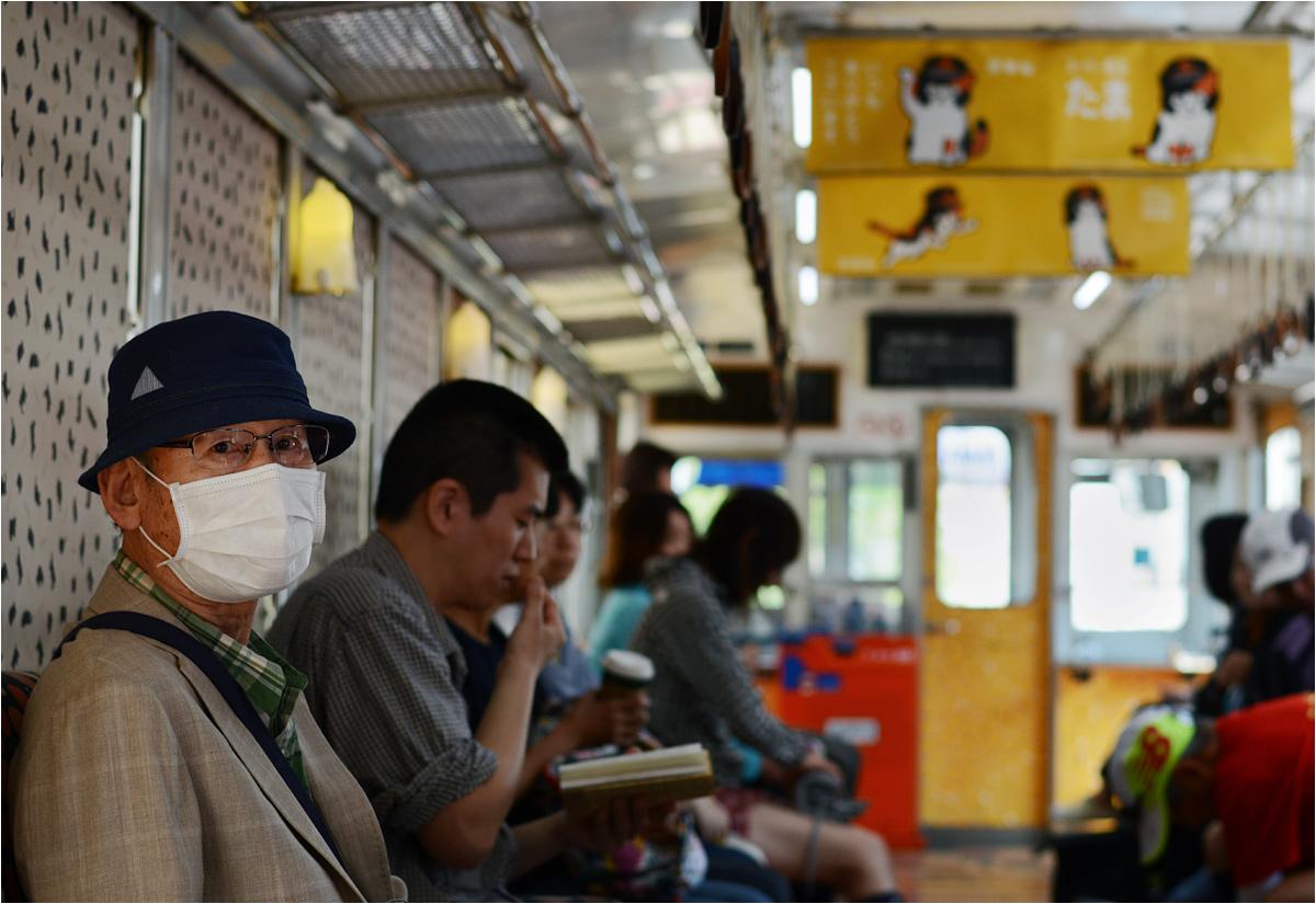 Kolej Kishigawa. Codzienni pasażerowie cierpliwie znoszą kocich turystów