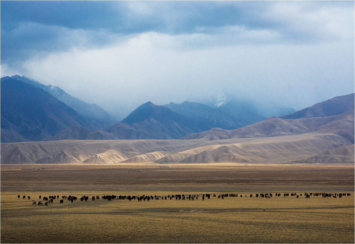 W trasie. Niebywałe pejzaże Kirgistanu