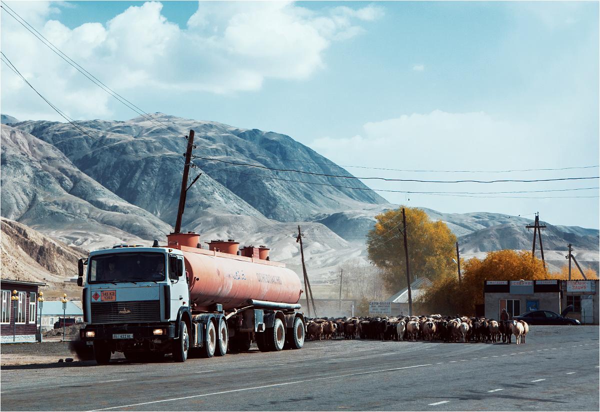 Wioska Sarybułak na trasie z Biszkeku do Naryna. Ciężarówka dodaje gazu, uciekając przed nadciągającym stadem owiec