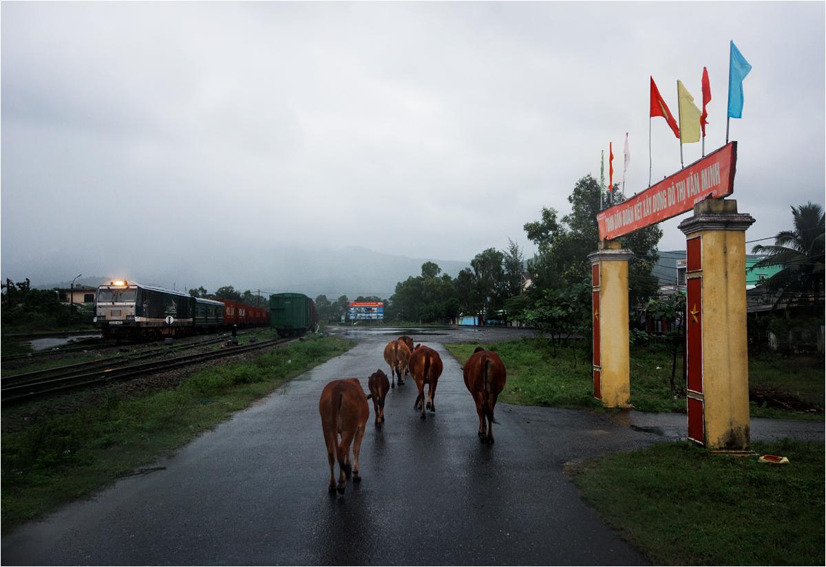 Tutaj podróż się kończy. Ze stacji Kim Liên będę musiał znaleźć jakiś transport do miasta