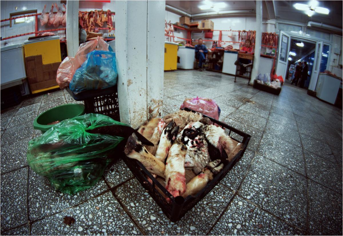 Żadna część zwierzęcia nie może się zmarnować. Na kirgiskim targu mięsnym wystawiono w skrzynce głowę i racice barana, a w workach foliowych czekają już popakowane baranie wnętrzności