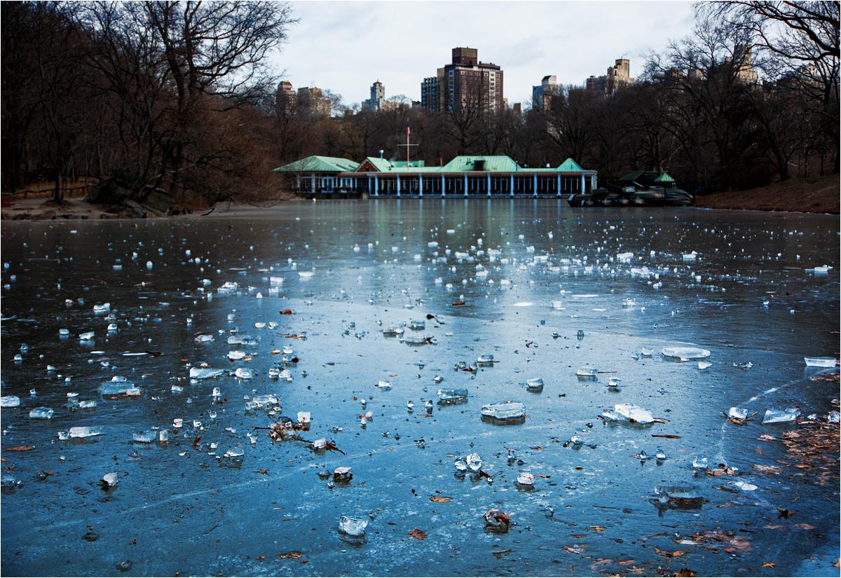 Zmrożony i opustoszały Central Park w Nowym Jorku