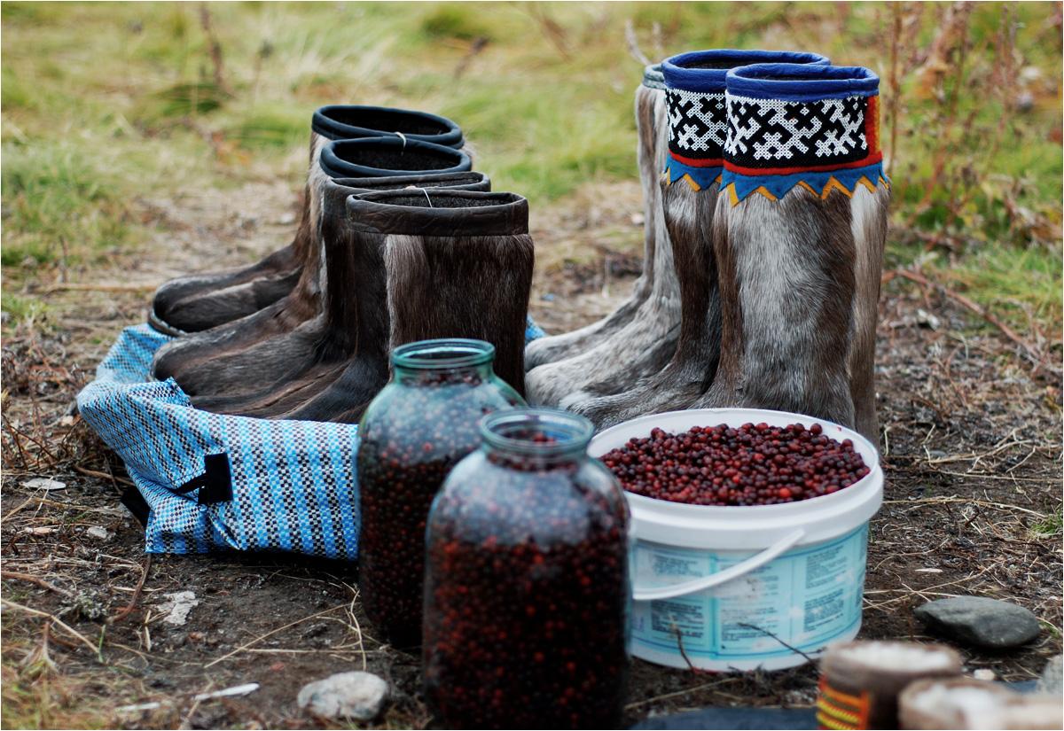Tundrowe jagody i buty z sierści renifera