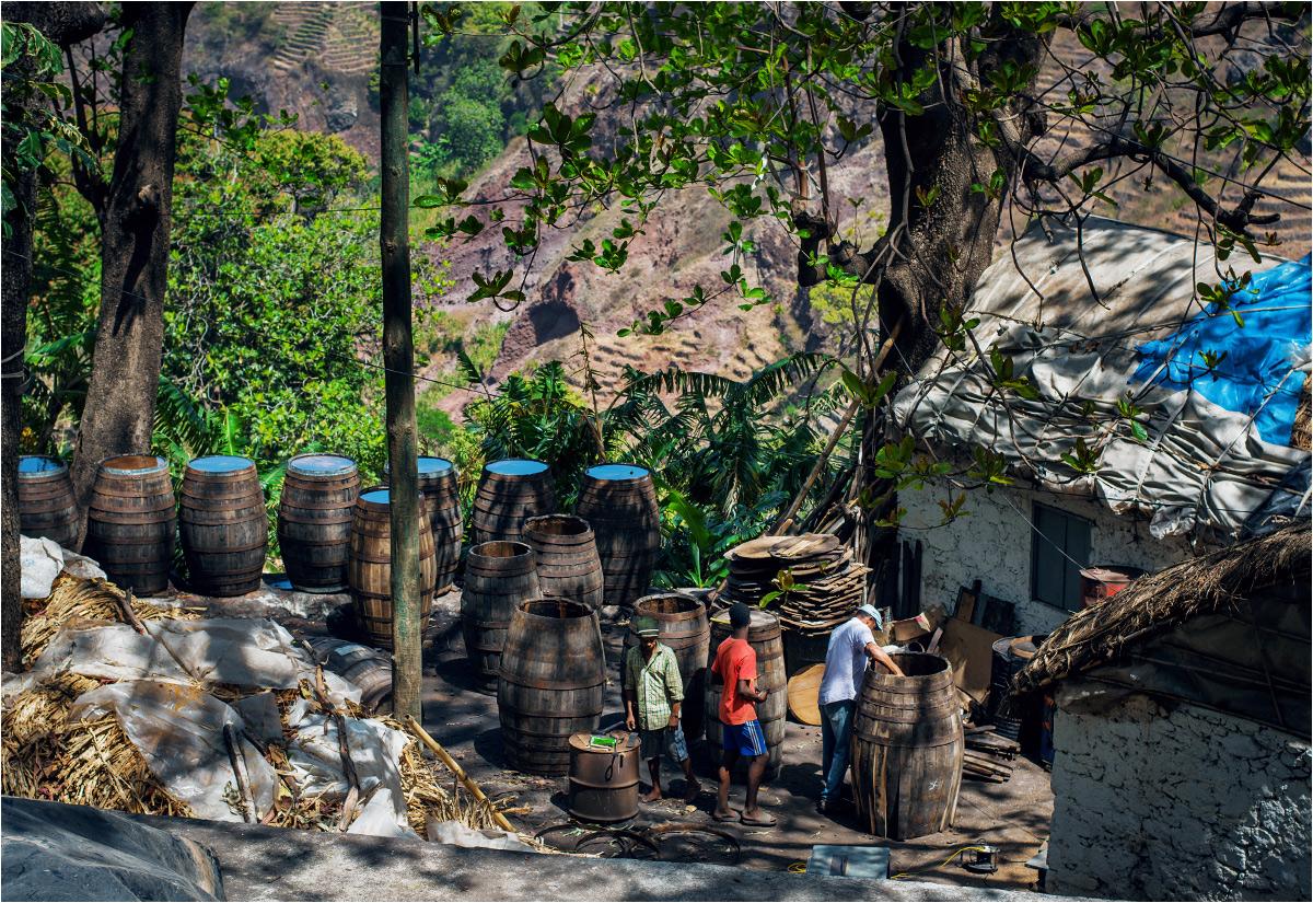 Wysoko w górach trwa produkcja beczek na grog