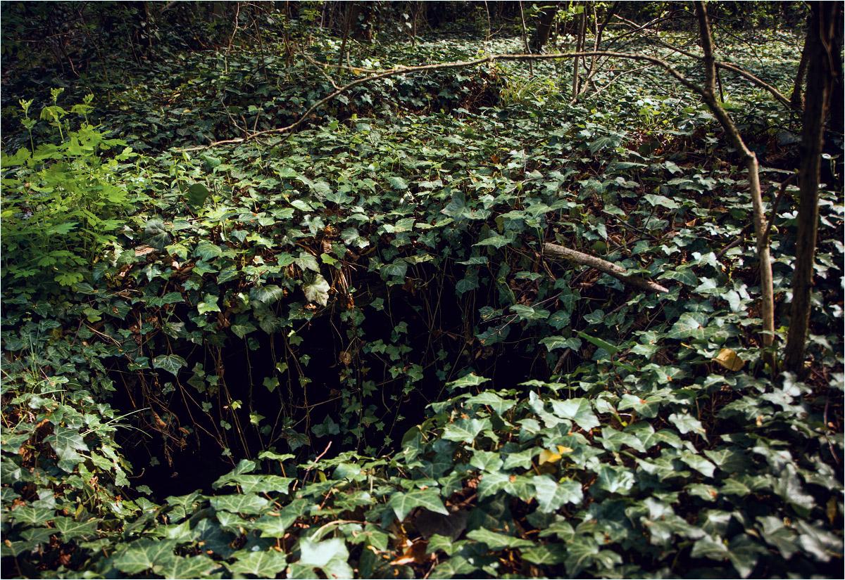 Jaroszewickie grobowce zostały już dawno rozkradzione