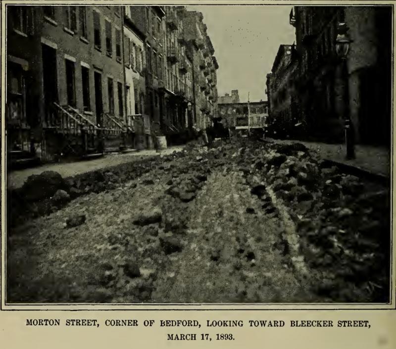 Trudno nam wyobrazić sobie miejskie ulice gęsto zasłane końskim łajnem, ale taka była rzeczywistość dziewiętnastowiecznego Nowego Jorku. Odchody i zwłoki koni przez wiele lat stanowiły poważny miejski problem