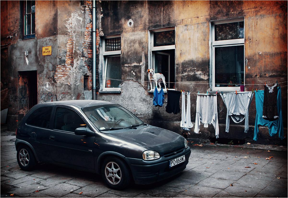 """Podwórko przy Szamarzewskiego 21 - to tutaj prowadzi słynna brama """"Na c** się patrzysz"""""""