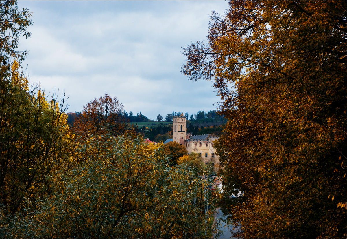 Zamkowa wieża wyrasta spomiędzy drzew