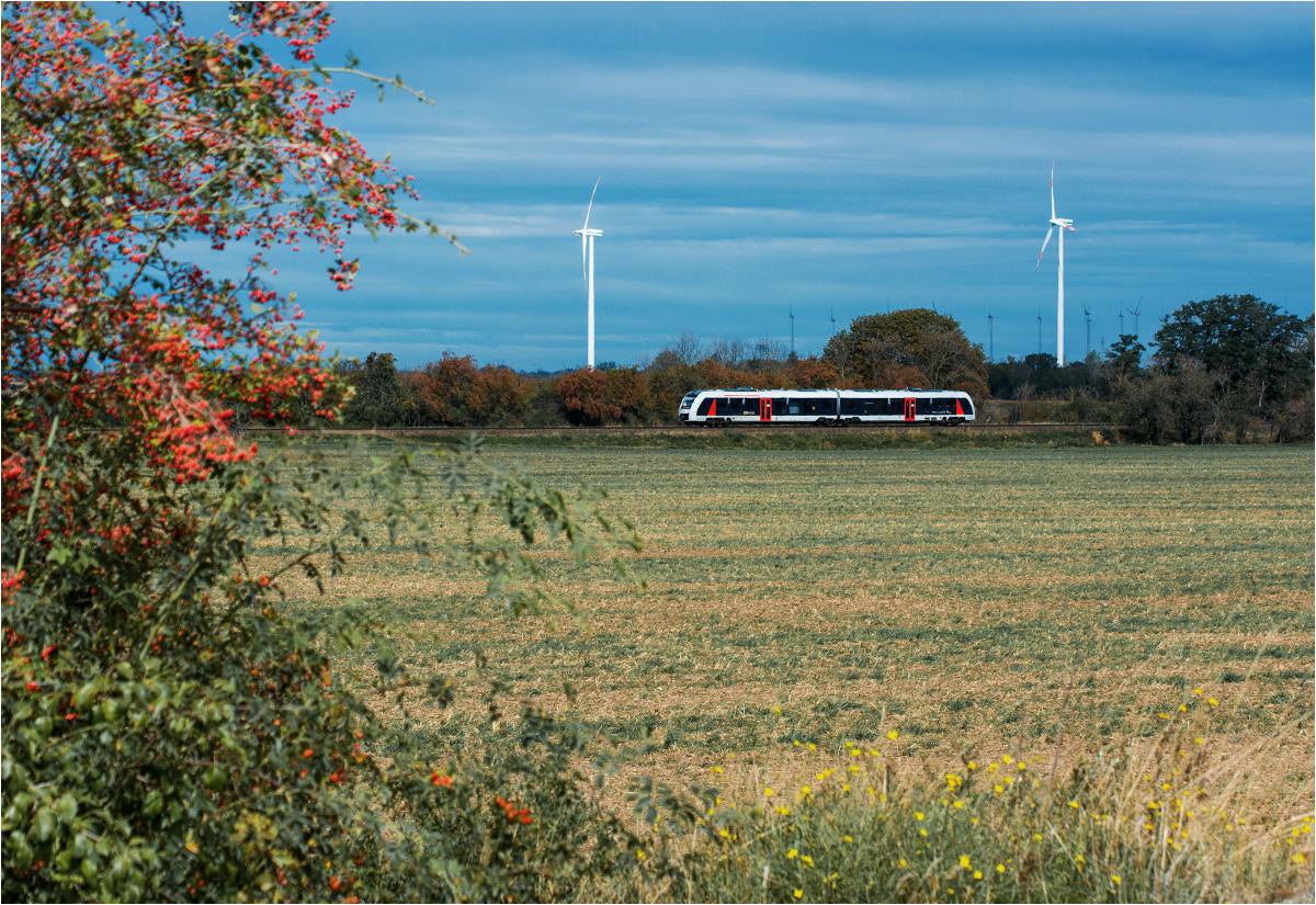 Förderstedt - spod ładowni wapienia widać pociąg osobowy z Magdeburga do Aschersleben
