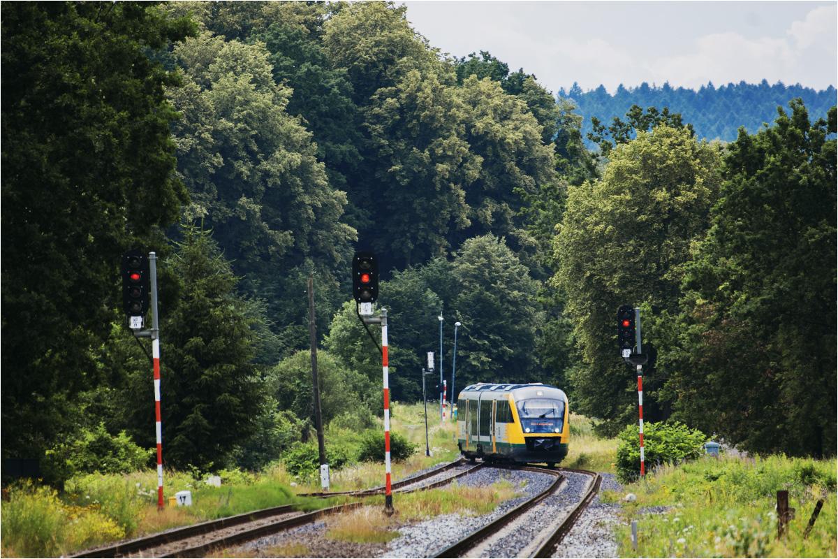 Południowa głowica stacji Krzewina Zgorzelecka. Widoczny pociąg relacji Zittau-Cottbus