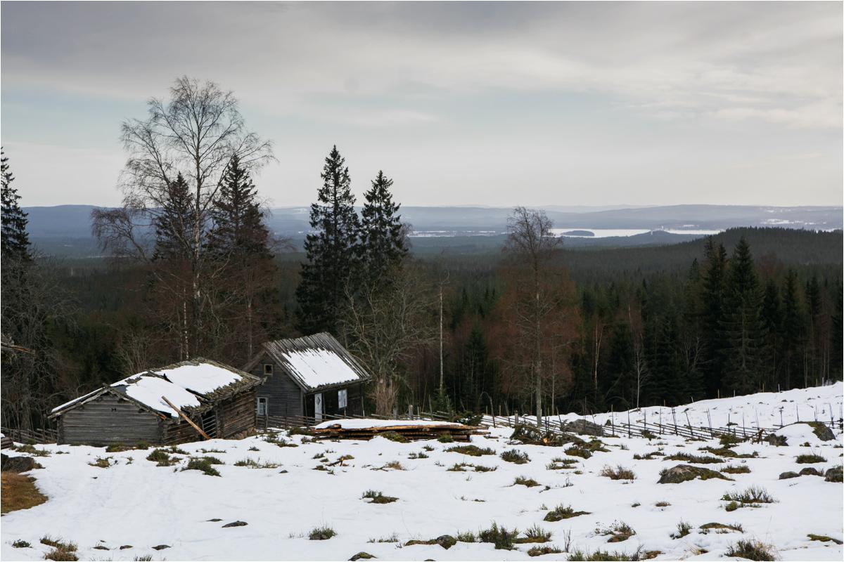 Ogromne przestrzenie Szwecji dają wrażenie, że łatwo tam uciec od społeczeństwa. Ale to tylko wrażenie